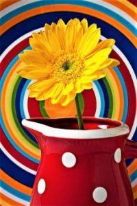 Colors - Garry Gay
