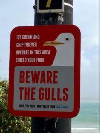 Warning! Beware....