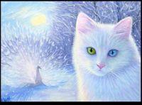 ~A Winter Dream 🐇🕊️❄️~