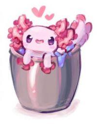 Minecraft Axolotl