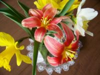 Day Lilies and Jonquils