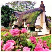 Two-Story Thatched Roof Cottage Beauty with Pink Roses