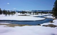 Polecat Creek, Grand Teton National Park