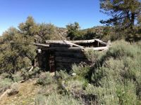 Abandoned dugout log cabin in Nevada