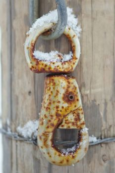 Rust and Snow