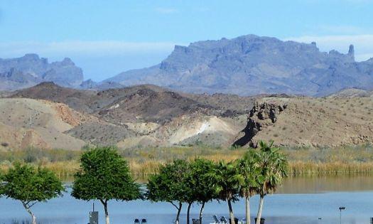 The Colorado River near Parker, Arizona