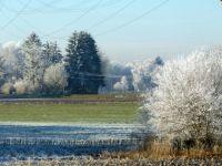 eisig kalt - die Natur friert