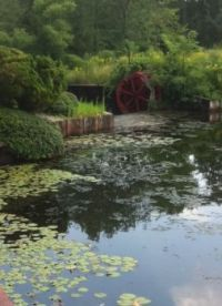 The Mill Dam and Water Wheel 7-18-13