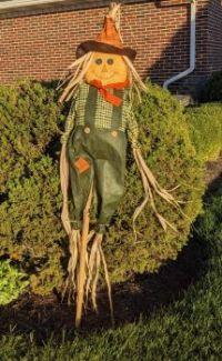 Mr. Un-scareycrow