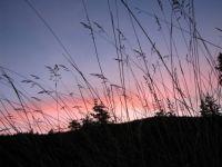 a sunset near Longmire