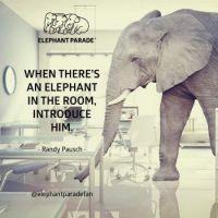 Elephantparade :-)