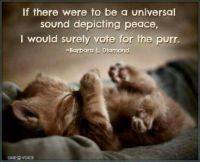 Power of the Purr