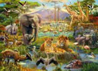 animal puzzle