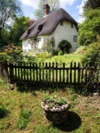 thatched cottage with fence