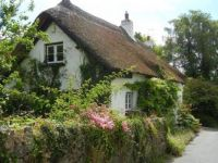 English cottage in Dunsford - Devon, England