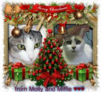 For you dear Auntie Marlene ☺ Merry Christmas from Molly and Miffie ♥