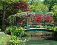 A Japanese garden . .