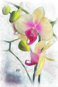 Flowing Orchids Painting