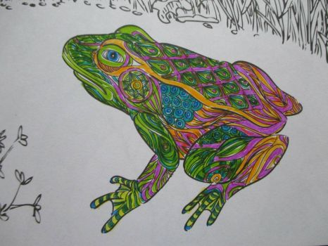 Frog - coloring  book