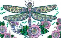 Small Pets Coloring Dragonfly