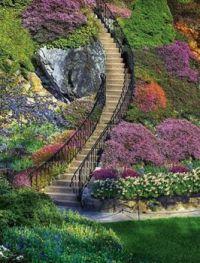 Stairway thru the Flowers