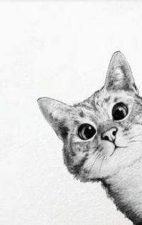 """Sneaky Cat"""