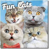2021 Wall Calendar Fun Cats