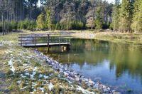 Rybník Olšoveček