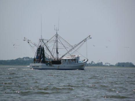 Edisto Beach shrimp boat