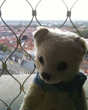 Growly having a breather after climbing Belfry tower