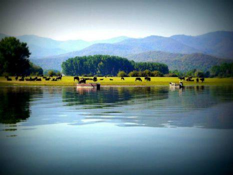 lake Kerkini1
