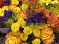 Yellow, Gold, Purple Flowers