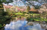 Shofuso Japanese House and Garden, Philadelphia, PA