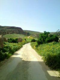 cyprus path