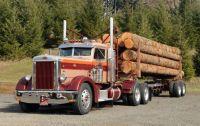 Logging_03