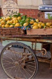 Theme: Numbers - Rusty Cart - Citrons de Menton