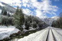 austria-winter-snow-pine-trees-339336