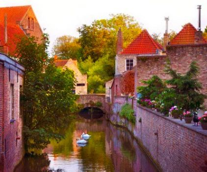 BELGIUM - BRUGE - CANAL WITH SWANS