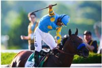 American Pharoah  12th Triple Crown Winner!
