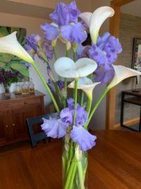 Irises and Calla Lillies