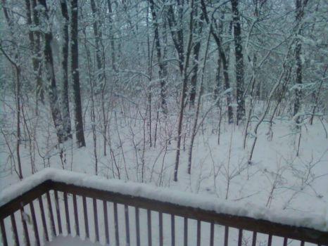 snow 1.24.15