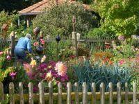 Viel Arbeit im Bauerngarten
