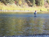 Fisherman on the Red Deer River