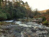Dartmoor Avon River Scene