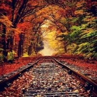 Railway tracks into the autumn