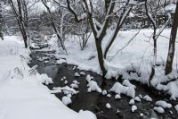 Snow capped stones in the stream