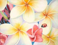 plumeria lady bug larger