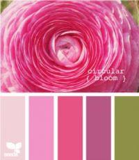 Circular Bloom 615