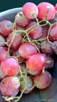 jigidi  210727  grapes