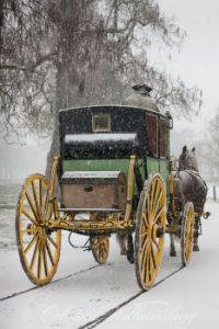 A Colonial Williamsburg Winter - The Carter Coach